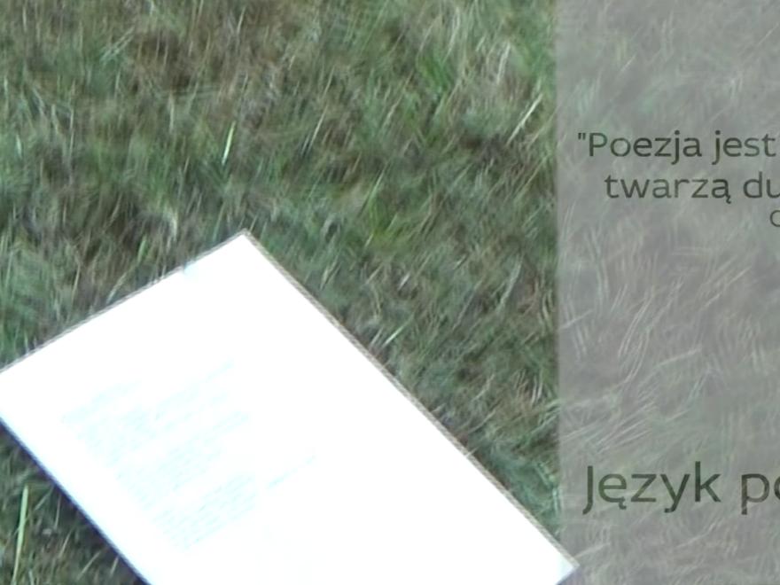 Język polski w Sobieskim